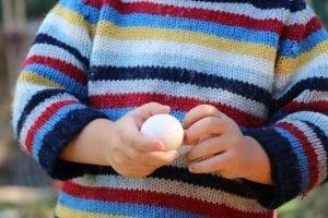 Child's hands holding egg.